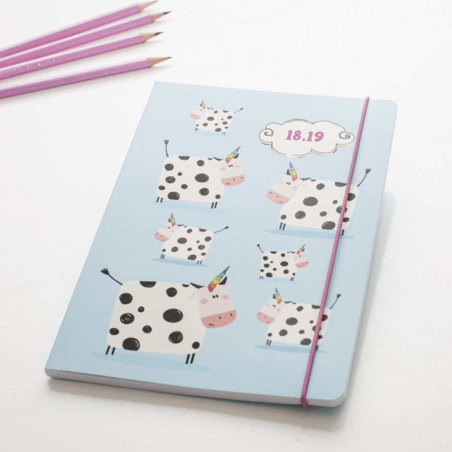 2018-19 Diaries for Mid Year