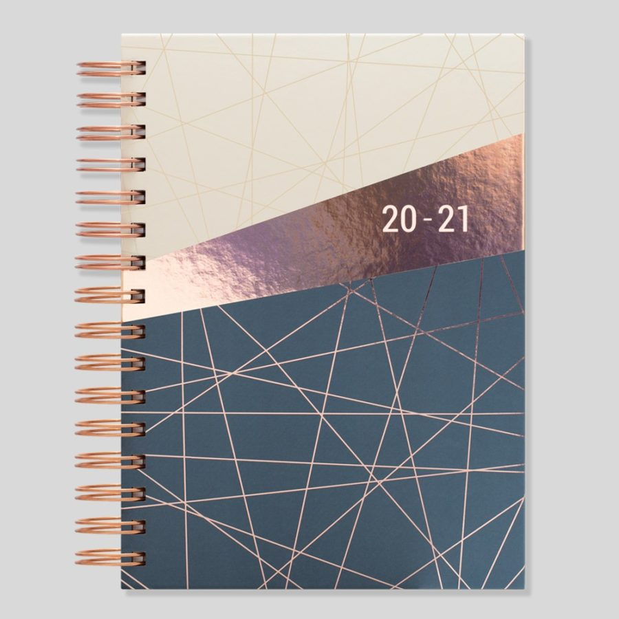 2020-2021 Diary Day a Page