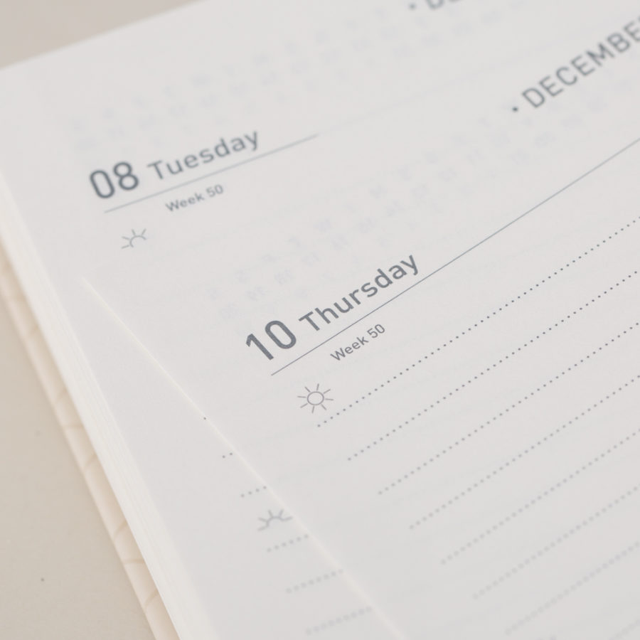 Day a Page Diaries