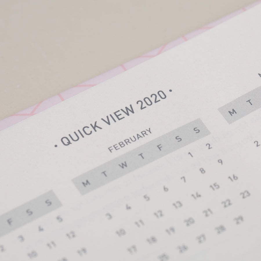 2020 Pink Diary Year Planner