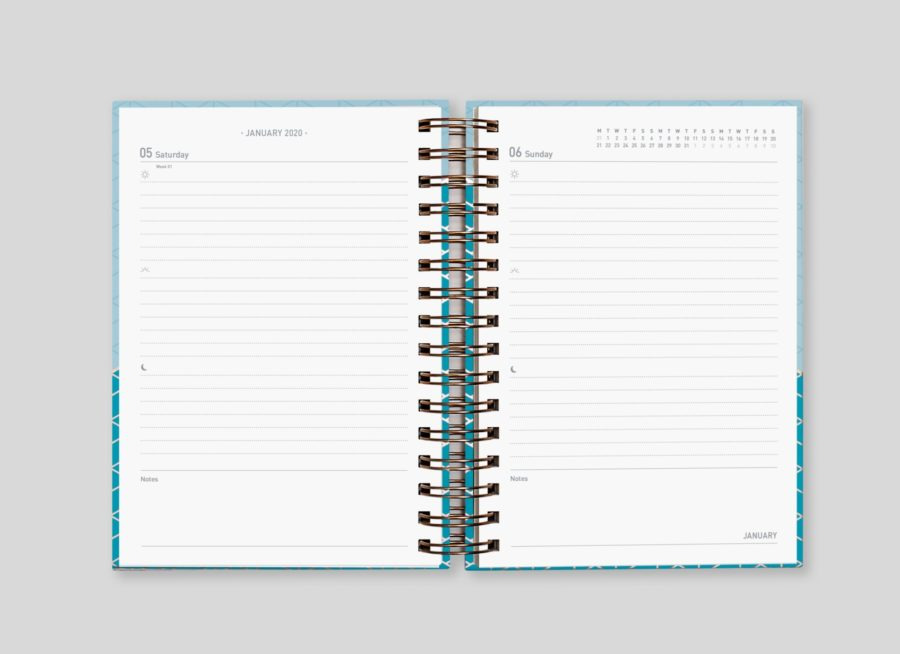 2020 Day Diary