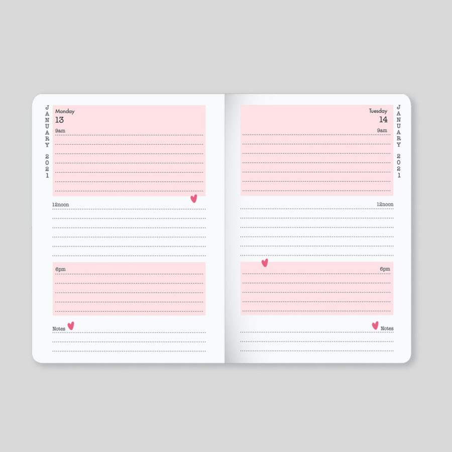 2020 2021 Diary Day a Page