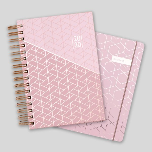 Matilda Myres 2020 Rose Gold Wiro A5 Daily Mid Year Diary & Notebook Set – Pink