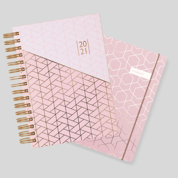 Matilda Myres 2021 Rose Gold A5 Daily Diary & Notebook Set – Pink
